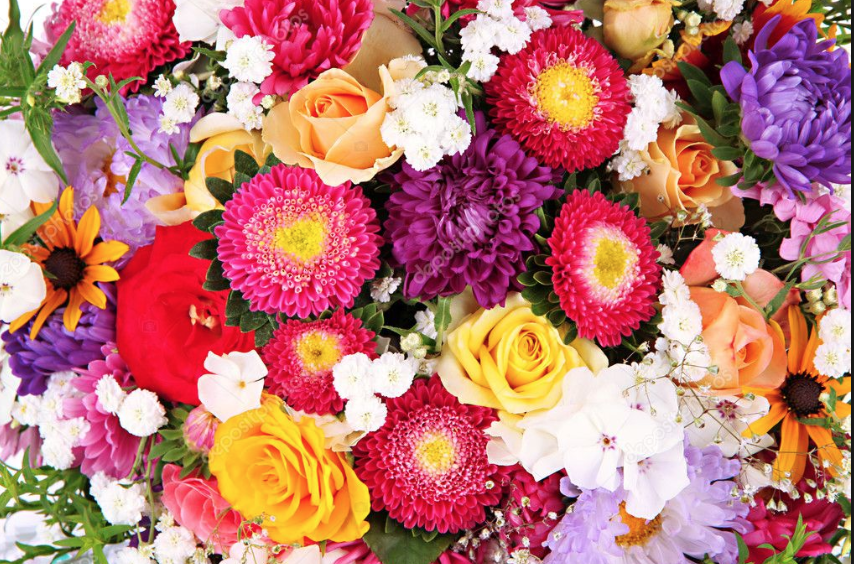 fiori diversi