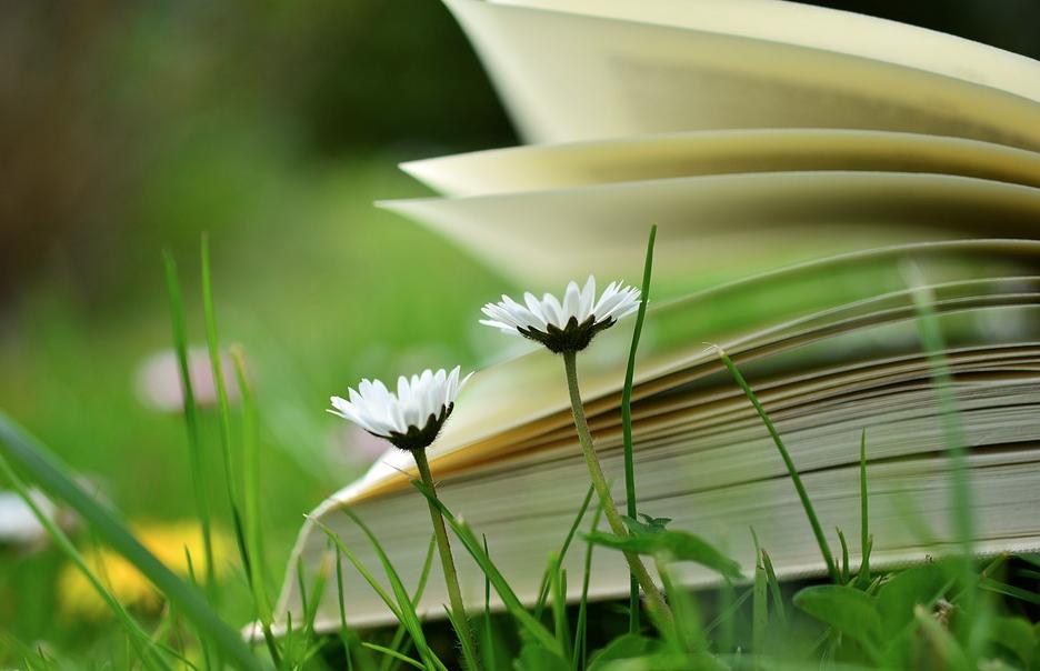 libro e fiori