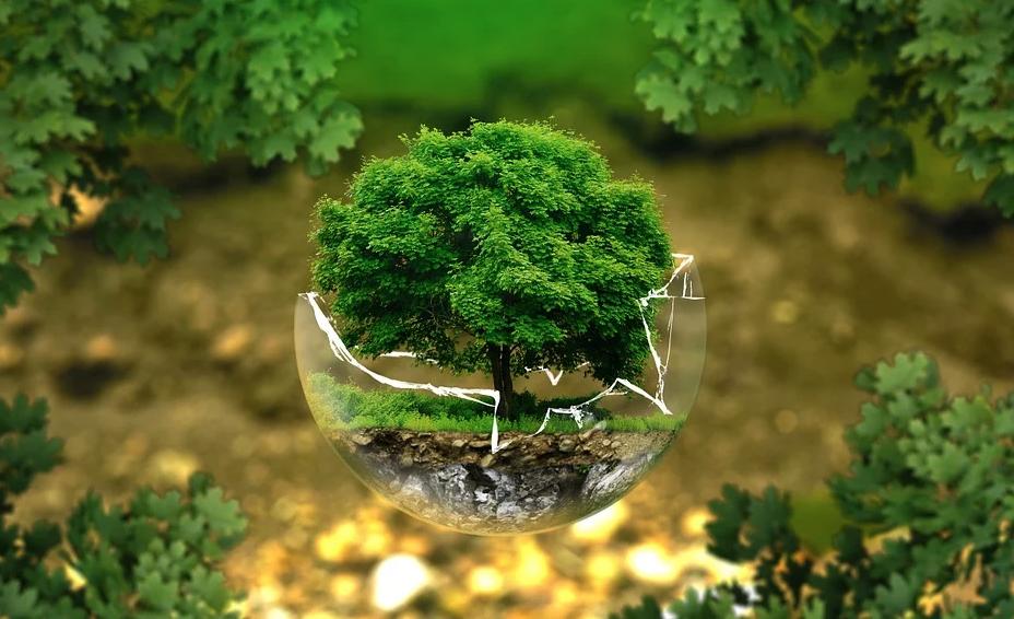 tutela ambiente