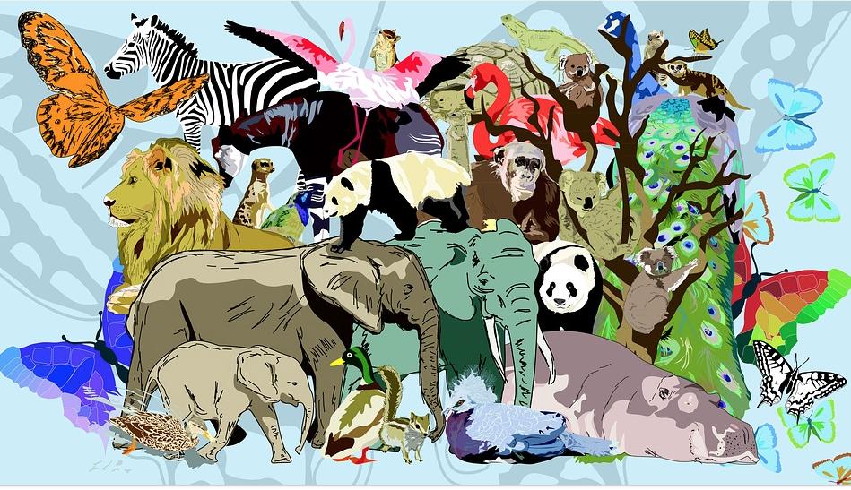 animali giungla